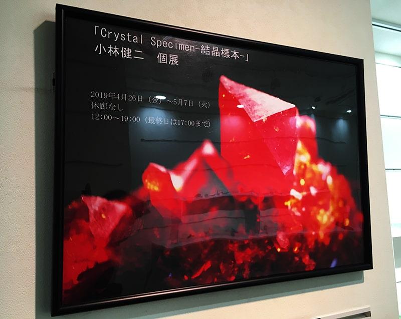 小林健二 個展『Crystal Specimen-結晶標本』